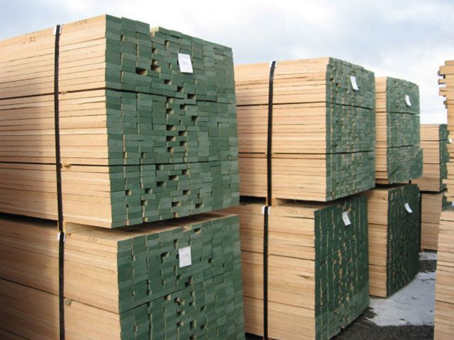 Malaysia's Premier Timber Supplier from Germany & USA - Green Dragon